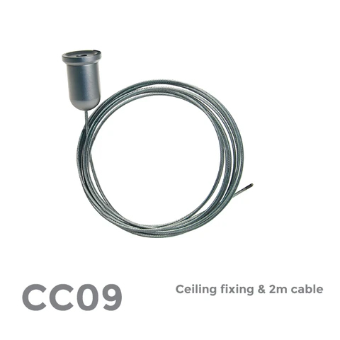 Ceiling Fixing & 2m cable 1